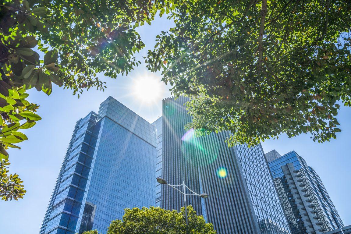 Sustainability Report - Halton